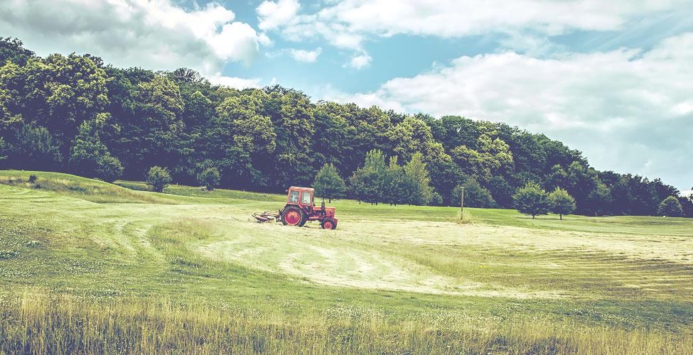 Le secteur agriculture-bio